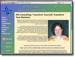 EFG Consulting, LLC